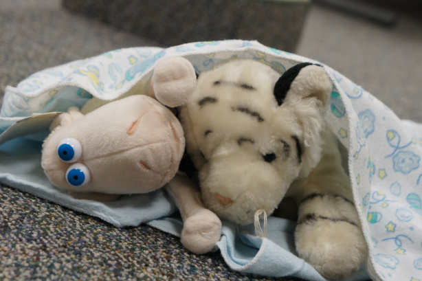 Stuffed Animal Slumber Party